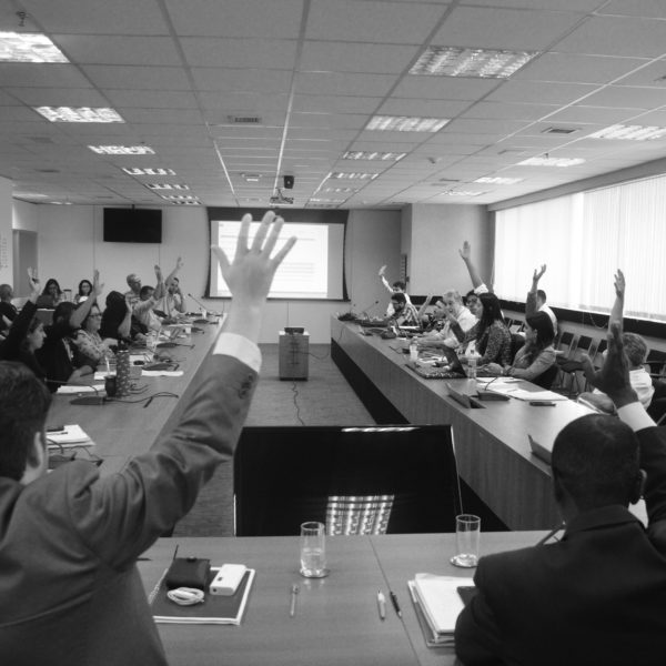 Instituto Alana é eleito como representante da sociedade civil no Conanda